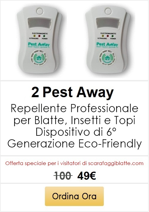 blatte in casa repellente ultrasuoni