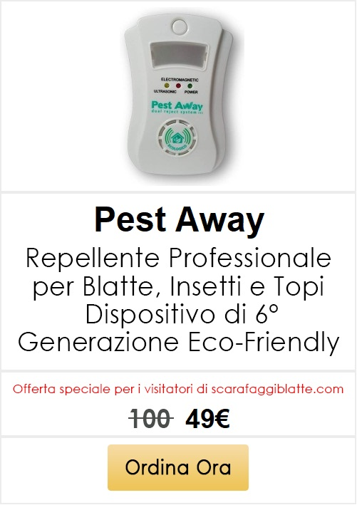blatte in campeggio pest away